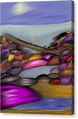 Driftwood Resting At Night Canvas Print by Paula Brown