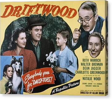 Driftwood, Ruth Warrick, Dean Jagger Canvas Print by Everett