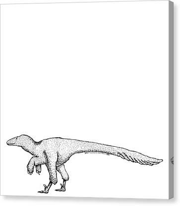 Dromaeosauroides - Dinosaur Canvas Print by Karl Addison