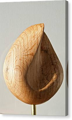 Droplet Canvas Print by Peter Hill