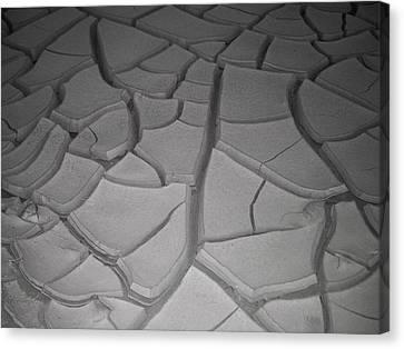 Dry Desert Lake Canvas Print by Naxart Studio