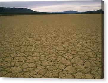 Dry Lake Bed Near Death Valley Canvas Print by Gordon Wiltsie