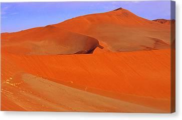 Dunes Canvas Print by Len Combrinck