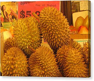 Durian Fruit Canvas Print by Alfred Ng