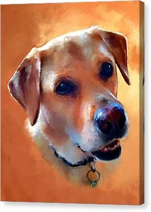 Dusty Labrador Dog Canvas Print by Robert Smith