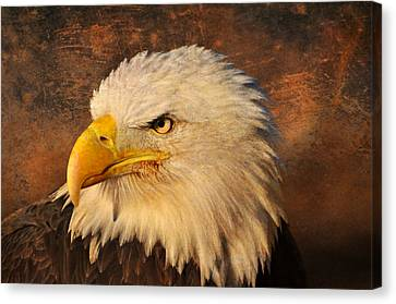 Eagle 47 Canvas Print by Marty Koch