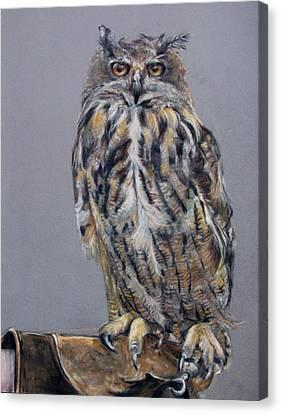 Eagle Owl Canvas Print by Tanya Patey