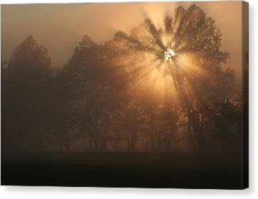 Early Morning Rays Canvas Print by Christopher Ewing