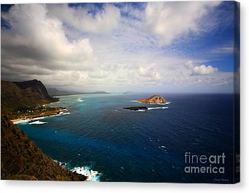 East Oahu Coastline Canvas Print by Cheryl Young