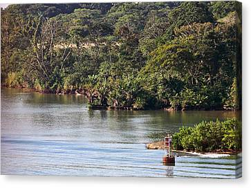 Edge Of Panama Canal Canvas Print by Linda Phelps