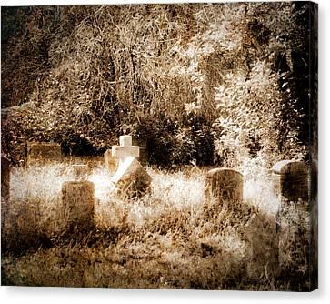 Eerie Cemetery Canvas Print by Sonja Quintero