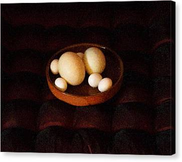 Eggs Canvas Print by YoMamaBird Rhonda