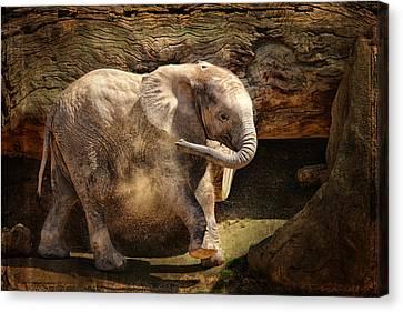 Elephant Calf Canvas Print by Larry Marshall