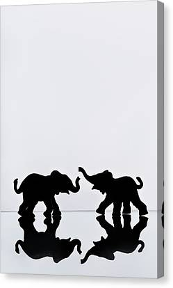 Elephant Pair Reflection Canvas Print by Chris Knorr