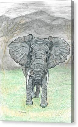 Elephant The Boss Canvas Print by Don  Gallacher