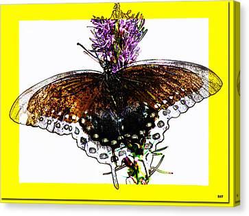 Enchanted Wings Card Canvas Print by Debra     Vatalaro