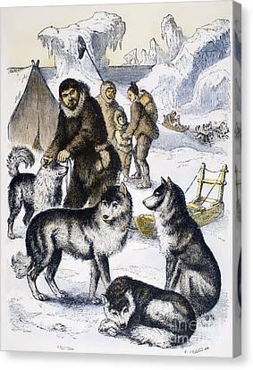 Eskimos & Sled Dogs Canvas Print by Granger
