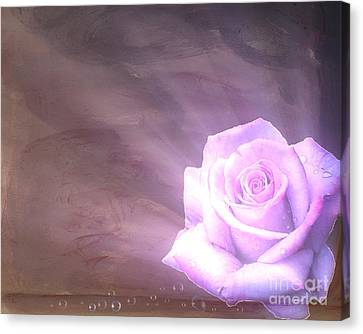 Eternal Light Canvas Print by Cheryl Young