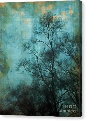 Evening Sky Canvas Print by Judi Bagwell