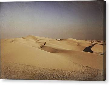 Ever Changing Canvas Print by Laurie Search