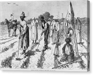 Ex-slaves, Working In A Gang Canvas Print by Everett