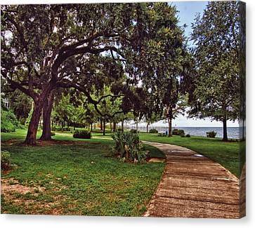 Fairhope Lower Park 2 Canvas Print by Michael Thomas
