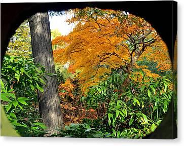 Fall Arriving Canvas Print by Vassilis Borovas