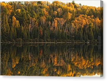Fall Colors Reflected In The Waters Canvas Print by Robert Postma