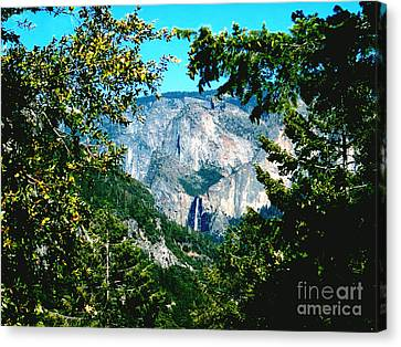 Falls Through The Trees Canvas Print by The Kepharts