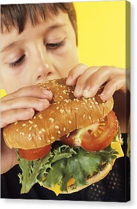 Fast Food Canvas Print by Ian Boddy