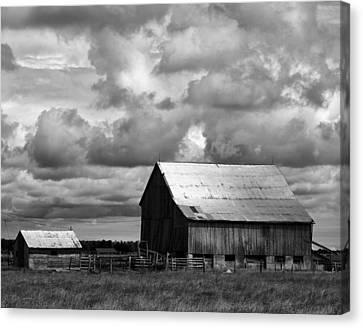 Father And Son Canvas Print by Darren Creighton