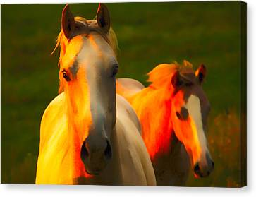 Father And Son Canvas Print by Randall Branham