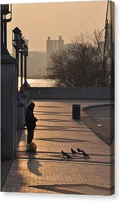 Feeding The Pigeons At Dawn Canvas Print by Bill Cannon