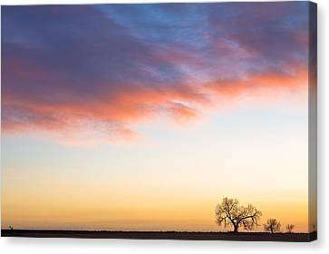 Feeling Small Canvas Print by James BO  Insogna