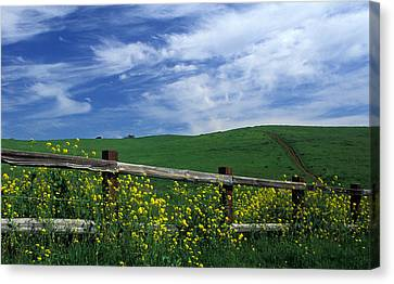 Fence And Flowers Canvas Print by Kathy Yates