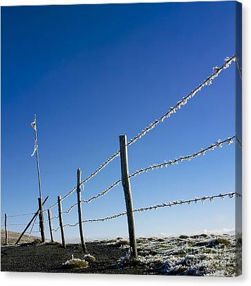 Fence Covered In Hoarfrost In Winter Canvas Print by Bernard Jaubert