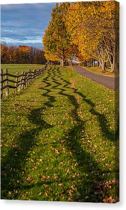 Fence Canvas Print by Guy Whiteley