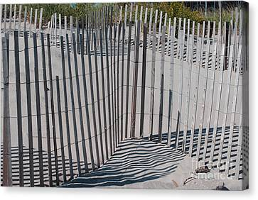 Fence Patterns II Canvas Print by Andrea Simon