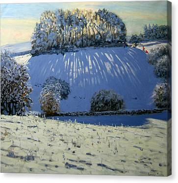Field Of Shadows Canvas Print by Andrew Macara