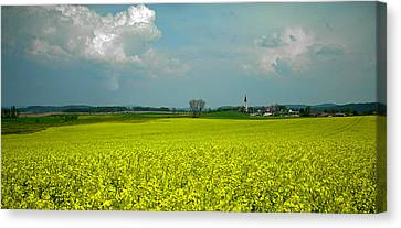 Fields Of Gold ... Canvas Print by Juergen Weiss
