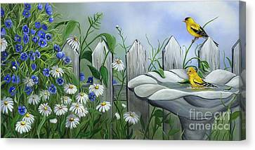 Finches Canvas Print by Sharon Molinaro