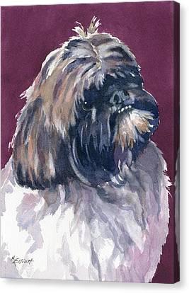 Finnigan Canvas Print by Marsha Elliott