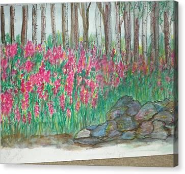 Fireweed By Stonewall Canvas Print by Debbie Wassmann