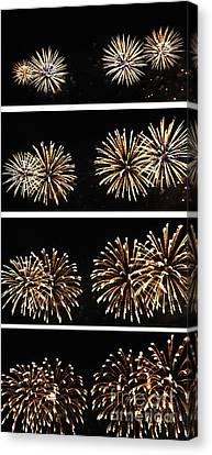Firework Lifecycle 1 Canvas Print by Meandering Photography