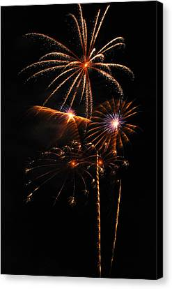 Fireworks 1580 Canvas Print by Michael Peychich
