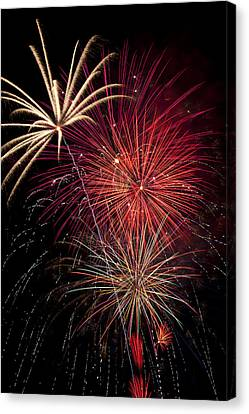 Fireworks Canvas Print by Garry Gay