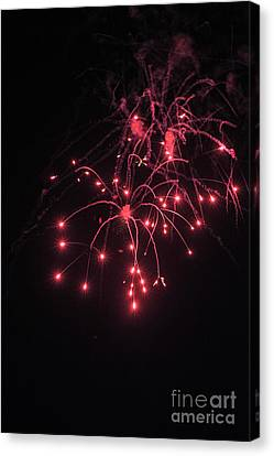 Fireworks Oooh 2 Canvas Print by Michael Flood