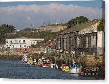 Fishing Boats Hayle Harbour Canvas Print by Brian Roscorla