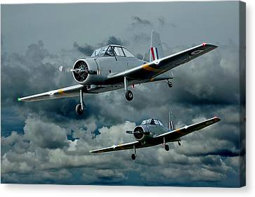 Flight Of The Winjeels Canvas Print by Steven Agius