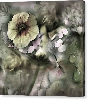 Floral Montage Canvas Print by Bonnie Bruno